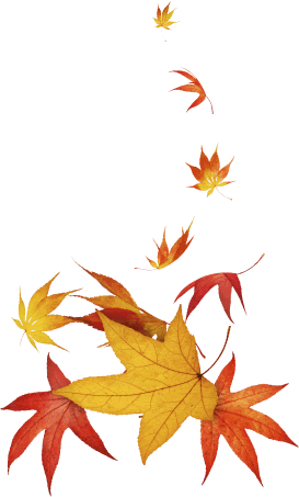 leaves_btm_right