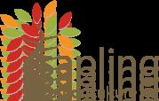 Sapling Arboriculture Ltd